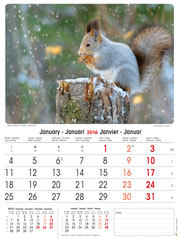 calendrier 2016 animaux